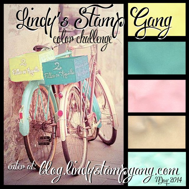 May '14 bikes