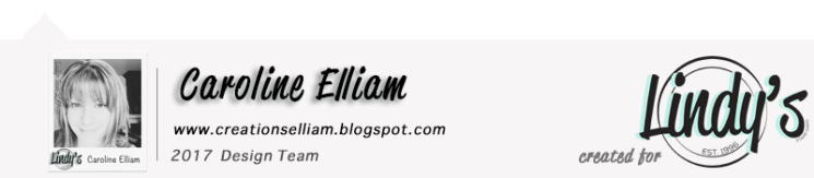 caroline-elliam-lsg-dt-blog-post-footer-2017